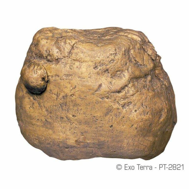 Exo Terra Feeding Rock 12.5x9x9.5cm