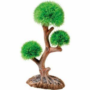 Aqua tree p41548