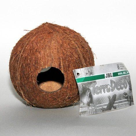 JBL Kokoshule