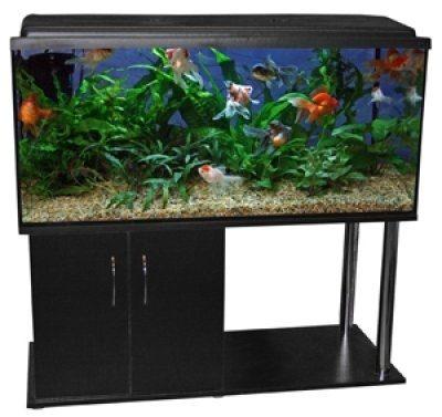 63 ltr. akvarium med lys og bord